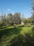 PL065 – Plot 1718.96 sq.m. – Thouria – 45000 €